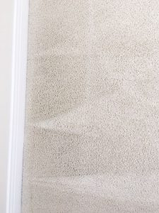 carpet cleaning trabuco canyob
