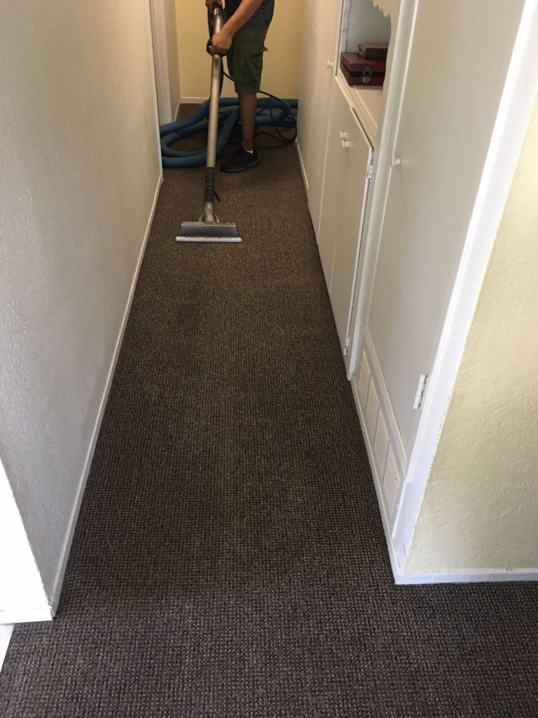 Dr Carpet Newport Beach