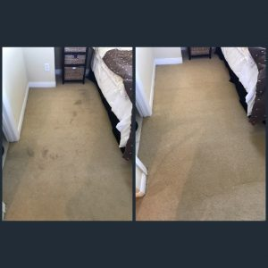 best carpet cleaning service in newport beach, ca
