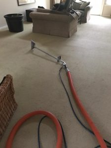 carpet cleaning in corona del mar